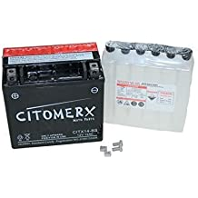 Batería sin mantenimiento YTX14-BS 12V 12AH inkl. Säure Aprilia RSV 1000, BMW F 650 GS, F 800 ST, GS, S, R, K 1200 R, K 1300 S, R, R 1200, Buell, (Incluye depósito)