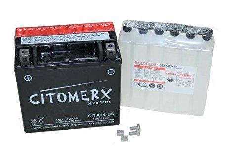Wartungsfreie Batterie 12V 12AH für Aprilia RSV 1000, BMW F 650 GS, F 800 ST, GS, S, R, K 1200 R, K 1300 S, R, R 1200, Buell, (inkl. 7,50 Euro Batteriepfand)