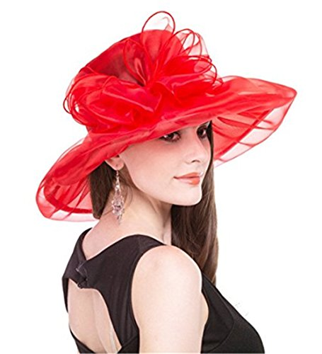 ZYCC Fascinator Brautparty Pillbox Hut Tee Party Hochzeit Derby, Frauen Organza Kirche Kentucky Derby, Lady Hat, Sonnenhut, Sommer Hut, Strand Reise Hut (Rot) (Kentucky Derby-hüte Damen)