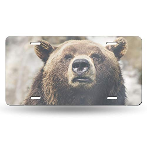 Doinh Nummernschild, niedlicher Bär, personalisierbar, einseitiger Druck, Retro-Kennzeichen, Aluminium, 30,5 x 15,2 cm -