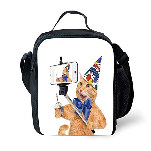 y,Birthday Cat Taking A Selfie Modern Day Kitty Party Anniversary Humor Animal Picture Decorative,Multicolor for Girls or Boys Washable ()