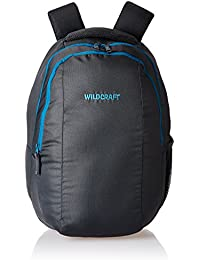 Wildcraft 32 Ltrs Grey Laptop Backpack (AM LBP 3.1)