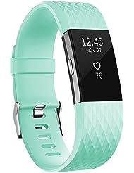 AdePoy Fitbit Charge 2 Armbänder, Klassisch Wasserdichte Erstatz Armband für Fitbit Charge 2