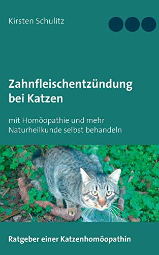 Zahnfleischentzündung bei Katzen: mit Homöopathie und mehr Naturheilkunde selbst behandeln