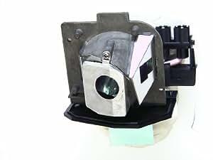 Optoma SP.89F01GC01 Lampe de remplacement pour projecteur HD65