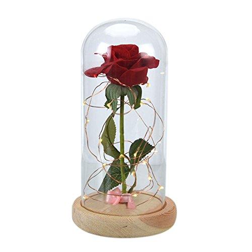 TOOGOO Flor rosa eterna Rosa de seda roja y luz LED con petalos caidos en cupula de cristal sobre una base de madera MEJOR regalo para el dia de San Valentin Aniversario de boda blanco