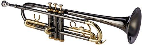Roy Benson RB701052 - Trompeta en Sib TR-101K, estuche ligero rectangular, color antracita