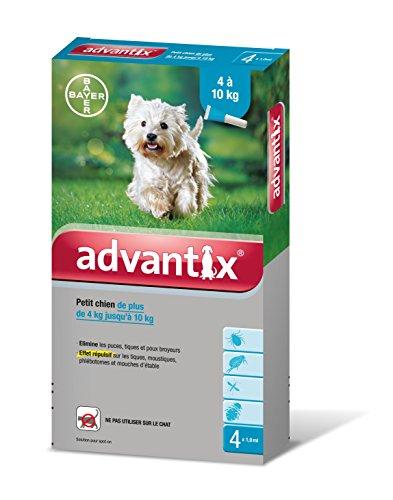 bayer-advantix-petit-chien-4-a-10-kg-4-pipettes-antiparasitaires-1-ml