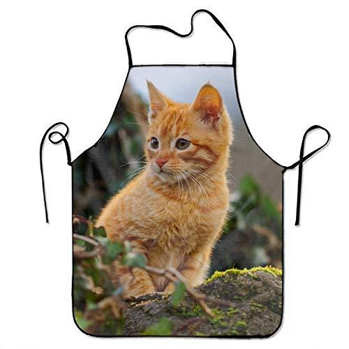 PANGERA Tier Katze Baby Kätzchen Print Herren
