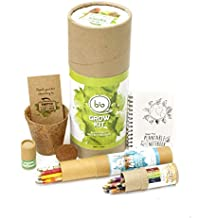 bioQ Mega Grow Kit - Planting Kit, Stationery Gift Box (1 Mini Notepad, 10 Mini Colouring Pencils, 4 Paper Pens, 4 Paper Pencils, Coco Husk Pot, Coco Peat Disk, Organic Fertilizer)