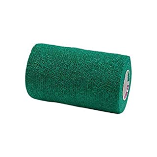 Andover Co-Flex Vet Flexible Wrap Bandages Lightweight and Breathable Green 4
