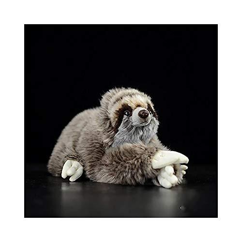 Tkhcoldm bambola di bradipo di simulazione bambola di pidocchio di bradipo tridimensionale regalo della bambola del giocattolo della peluche di bradipo di amazon, 27cmb