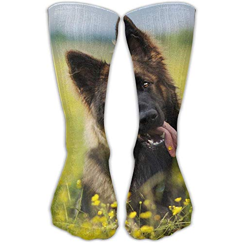 Women Men Classics Socks Cute German Shepherd Puppy Athletic Stockings 30cm Long Sock One Size