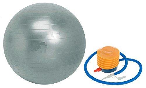 Swiss ball palla per esercizi di pompa e istruzioni guida argento