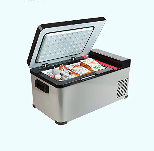 YLG Compact Refrigerator, Mini Fridge, Suitable For Cars, Families, DC 12/24V, AC 220V, 17L