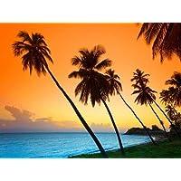 Feelingathome.it, STAMPA SU TELA 100% cotone INTELAIATA Caraibi Antigua e