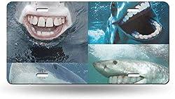 Dom576son 15,2 x 30,5 cm Nummernschild, Aluminium-Schild, Sharks As Humans Kick Funny 50 State Personalisierte Neuheit Tag Auto Fahrrad Motorrad Moped Schlüsselanhänger Nummernschild