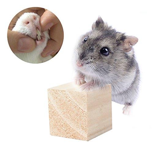 Fogun Kauen Spielzeug, Seil Holz Blöcke Kauen Spielzeug für Hamster Maus Guinea Rat Igel (Guinea Block)