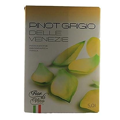 Weiwein-Bag-in-Box-Pinot-Grigio-50-Liter-VERSANDKOSTENFREI