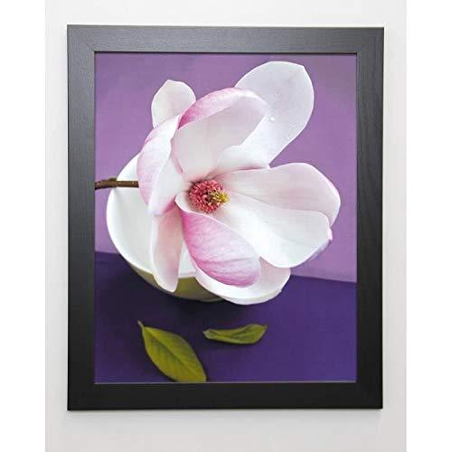 BEYLER CATHERINE Image encadrée Composition Zen : Fleur de Magnolia sur coupe verte - 47x57 cm - Violet Magnolia Coupe