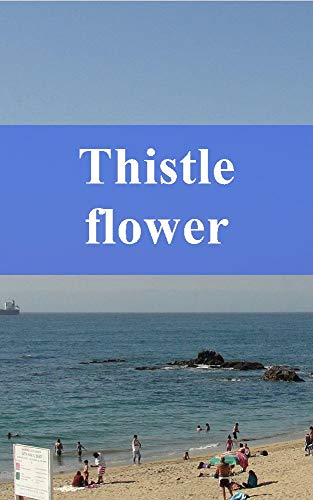 Thistle flower (Irish Edition) Irish Thistle