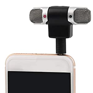 Zinniaya Portable Mini Mic Digital Stereo Microphone for Recorder Mobile Phone