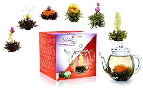 """Creano Teeblumen Mix – Geschenkset """"ErblühTee"""" mit Glaskanne 500ml Weißtee & Schwarztee mit 6 Teekugeln je 3x weißer & schwarzer Tee"""