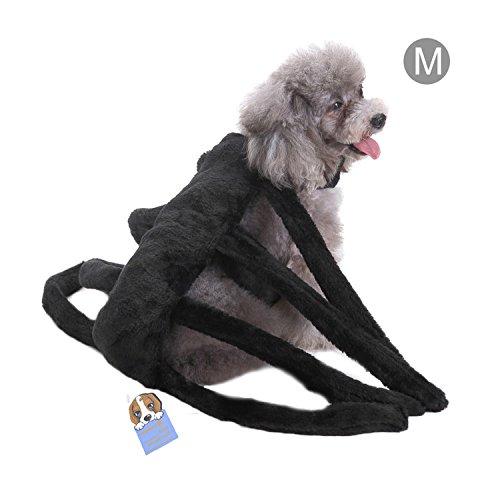 Haustier Halloween Kostüm Hund Spinne Harness Clothes (Für Kostüm Männer Hund)