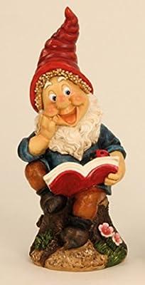 Süsser Gnom Zwerg Gartenzwerg Buch rote Mütze 34 cm Figur für Haus und Garten