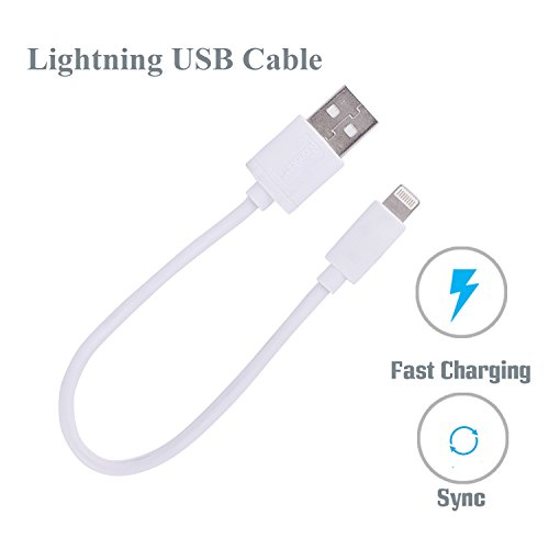 Phonokart Sports Series 8 Pin Lightning To Usb Charging With Sync Data Short Length Small Power Bank Data Cable For Apple Iphone 6 / 6S / 6 Plus / 6S Plus / 7 / 7Plus/5/ 5S/5C,Ipad Mini  available at amazon for Rs.179