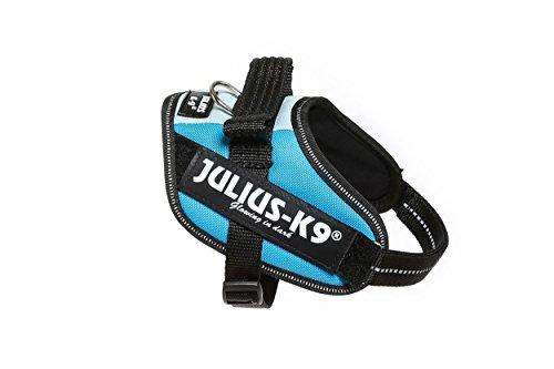 JULIUS-K9,16IDC-3BL-MM, IDC-Powergeschirr, Größe: Mini-Mini, 3blau Preisvergleich