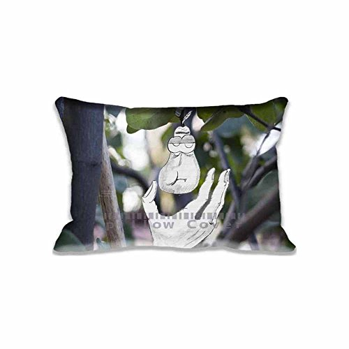best-gift-home-decorations-edy-pillow-shams-standard-20x30-twin-sides-zip-pillow-cushion-covers