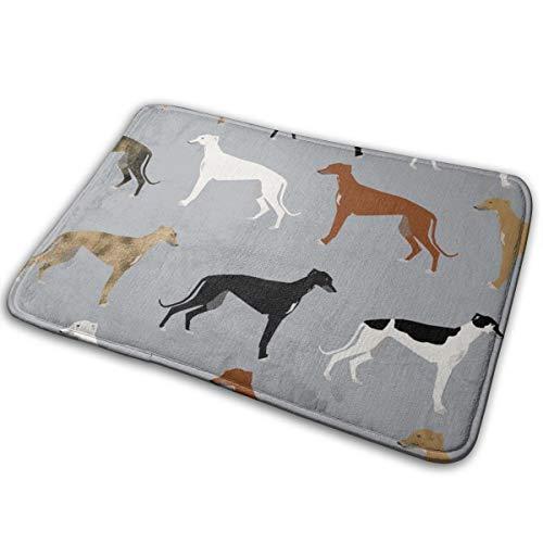 bbelieve Greyhounds Cute Dog Rescue Dog Beste Hunde Cute Dog Design Beste Hunde Brindle Dogs_1786 16X24 Zoll Welcome Mat Mit Anti-Rutsch-Gummi-Türmatte Für Patio-Front -
