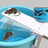 Mausefalle Lebend, Sicher für Menschen und Haustiere Startseite Mäuse Pest Nagetier Maus Wippe Fallen Walk Plank Mausefalle Bait Catcher Tool White