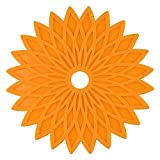 MWPO Tovagliette, Set di 6 tappetini Geometrici Floreali in Gel di silice Tovagliette Lavabili Resistenti al Calore Tavolo da Pranzo Sottobicchieri per Barbecue da Giardino (Colore Opzionale), AR