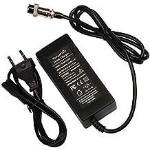 TangsFire Cargador de batería de Plomo 24 V 2 A para Scooter eléctrica, E-