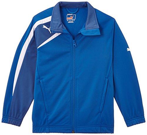 PUMA Herren Jacke Spirit Poly Jacket Puma Royal/Delft Blue/White