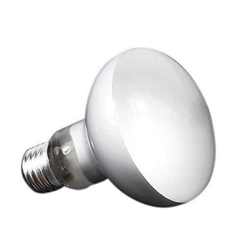 Umiwe E27 25/40/60/100 Watt UVA Quecksilberdampflampe/Lampe/Licht für Reptilien und Amphibien - Ausgezeichnete UVA Reptillicht/Reptilbirne