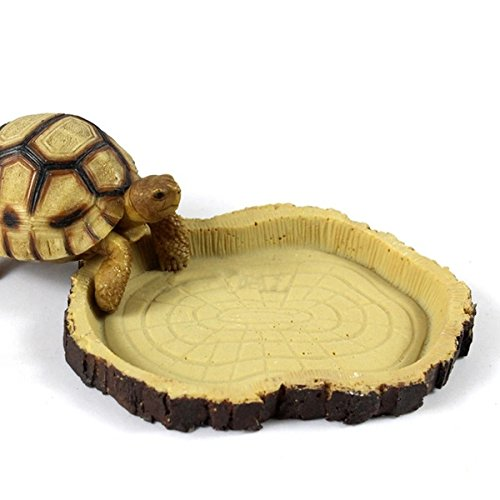 Reptile Feeding & Water Bowls