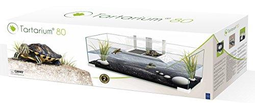 Tartarium 80, teca in vetro per rettili, tartarughe d'acqua e di terra, con 2 rampe