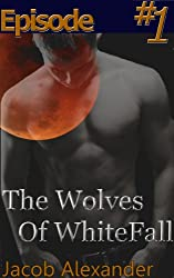 Episode 1: The Wolves Of WhiteFall (Gay Werewolf Erotic Romance) (English Edition)