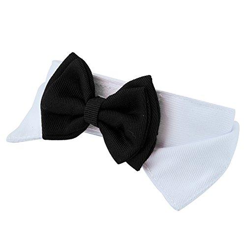 Pinzhi Hunde Katze Haustier Halsband Fliege Schleife für Party (Weiß&Schwarz) - 2