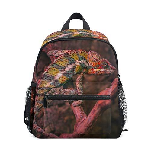 MUOOUM Kinder-Rucksack mit Reptilien-Eidechsen-Motiv, für Vorschulkinder