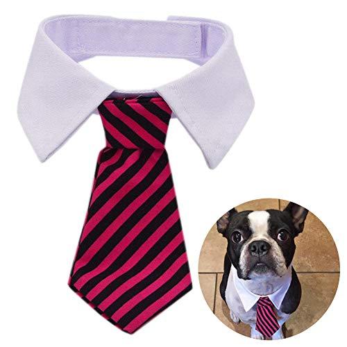 ZOOENIE Hunde Katzen Krawatte, Einstellbar Halsband Halskette Fliege Schleife Halskrause Hundefliege Halsschleife für Welpen Katze Haustier (Rot) -