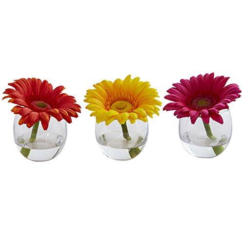 aisy Arrangement in Vase, Set 3, Multi/Farbe ()