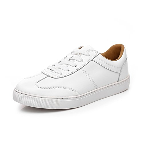 Petites chaussures blanches/Chaussures plates/chaussures de loisirs de sport/Chaussure étudiant blanc A