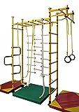 NiroSport FitTop M3 Indoor Klettergerüst für Kinder Sprossenwand für Kinderzimmer Turnwand Kletterwand, TÜV geprüft, kinderleichte Montage, Made in Germany (Grün, Raumhöhe 220-270 cm)