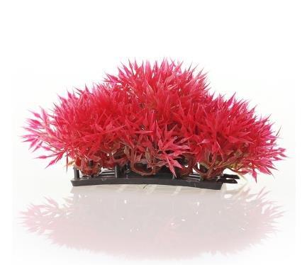 Vi.yo Künstliche Aquarium Kunststoff Pflanzen Aquarium Simulation Wasser Gras Aquarium Decor,6,5 * 4 * 5,5cm (Rot) (6 Kunststoff-aquarium Pflanzen)