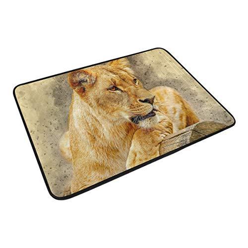 FANTAZIO Fußmatten für Eingangsbereich im Freien, Afrika Tiger, zum Anlegen auf Holz-Teppich, gerade, für Küche/Badezimmer, 59,9 x 39,9 cm