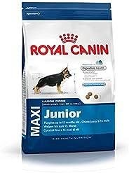 Royal Canin Maxi Junior Dogs Food - 16 kg